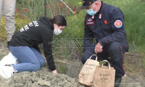 """Crotone, gli studenti con i carabinieri piantano """"un albero per il futuro"""""""