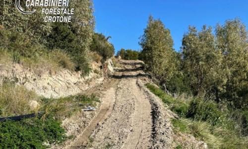 Isola Capo Rizzuto, realizza strada nel bosco di Praialonga: denunciato 53enne