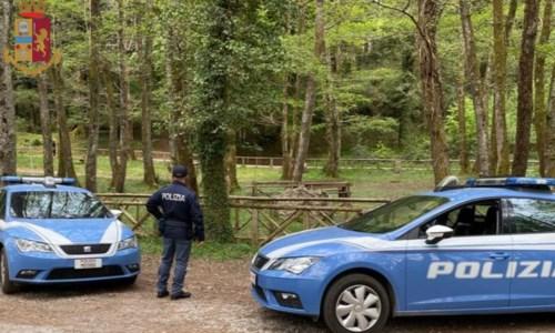 Scampagnata e barbecue a Serra San Bruno, sanzionate sei persone