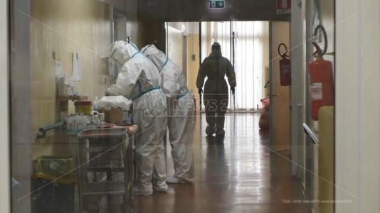 Emergenza pandemiaSospetto focolaio Covid in una colonia estiva nel Cosentino: positivi un bambino e un adulto