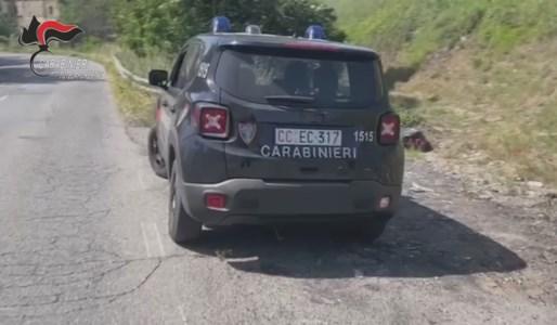 Guerra aperta ai 'lordazzi' nel Cosentino: multe per oltre 5.000 euro