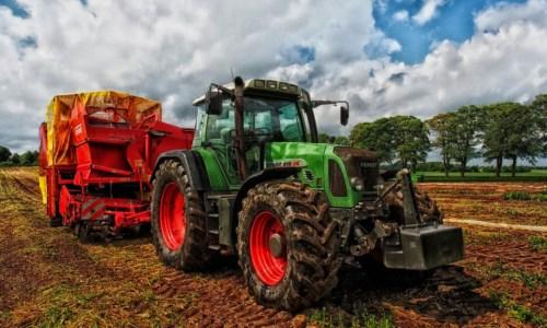 Oltre 12 milioni di euro per gli agricoltori calabresi. Gallo: «Sosteniamo i nuovi investimenti»