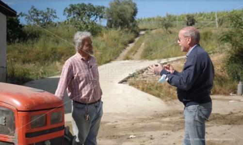 Roberto, il pioniere dell'agricoltura biologica in Calabria: la sua storia su LaC Tv