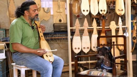 """La """"sinfonia"""" di Ares, il cane che accorda strumenti musicali: video"""