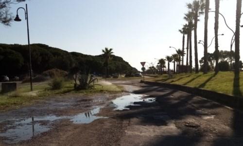 Catanzaro Lido, inizia l'estate ma il problema dell'irrigazione del verde pubblico resta irrisolto