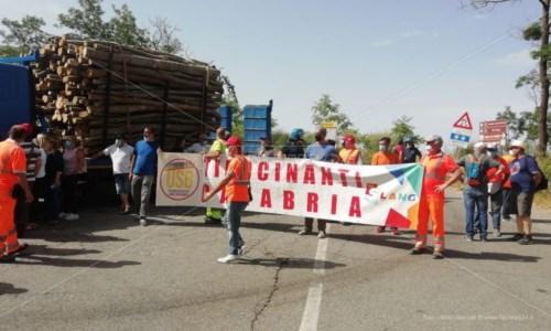 I tirocinanti in protesta a Spezzano Sila