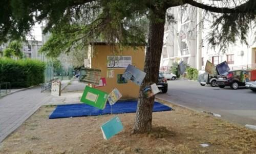 Crotone, un albero di libri cadenti nel quartiere Lampanaro