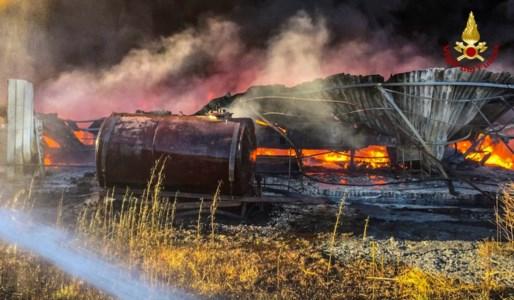 Bisignano, spaventoso incendio devasta un'azienda vivaistica nei pressi dell'autostrada