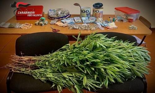Filadelfia, 75 piante di marijuana e 5mila euro nascosti in campagna: arrestato 36enne