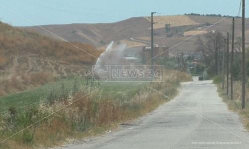 Crotone, è emergenza idrica in agricoltura: «L'acqua non basta più»
