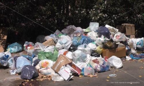 Caos rifiuti, Granata (Consorzio Valle Crati): «La gestione dei conferimenti sia affidata al pubblico»