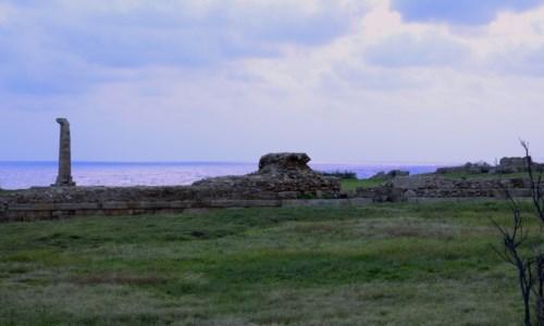 Uno scorcio del Parco archeologico di Capo Colonna a Crotone