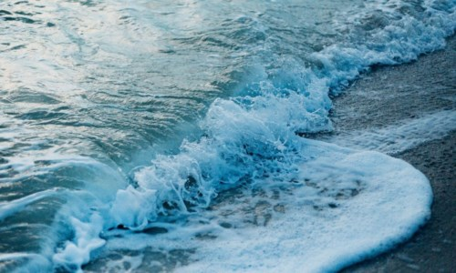 La cultura della legalità a tutela del mare, venerdì il convegno a Cetraro
