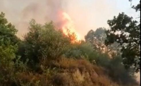Emergenza roghiAncora incendi nel Reggino, in fumo 90 ettari di macchia mediterranea