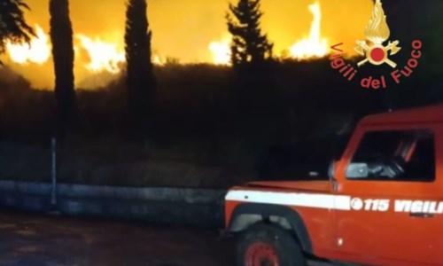 Calabria in fiammeIncendi, politica e associazioni chiedono lo stato di calamità. Bruni: «Il Governo ci aiuti»