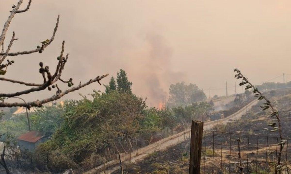 L'incendio a Roccaforte del Greco