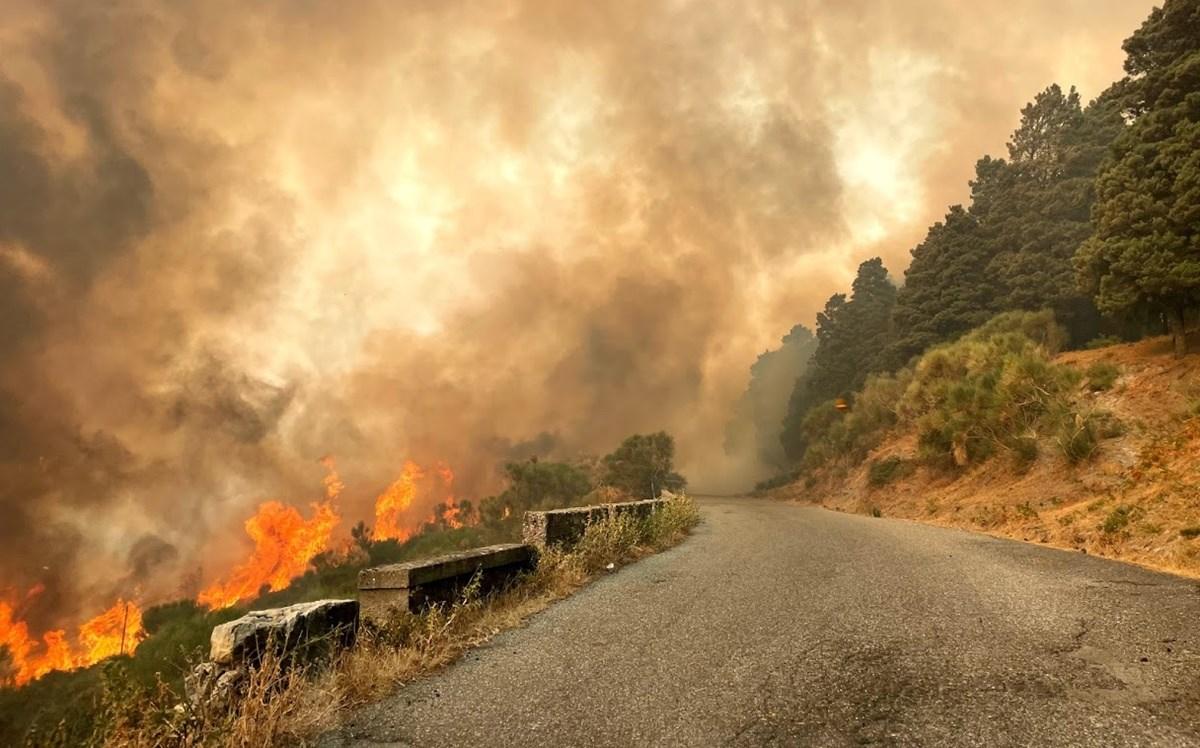 Uno degli incendi che ha colpito Roccaforte del Greco