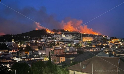 Roghi e polemicheIncendi, Legambiente: «Calabria senza prevenzione e commissariata anche in questo settore»