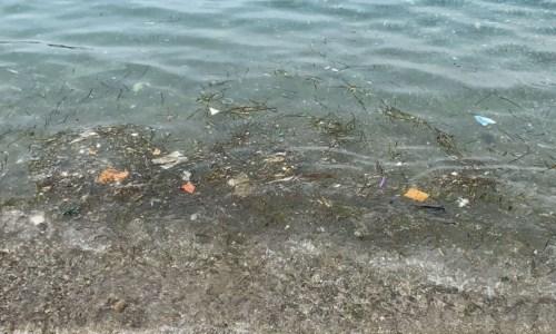Il mare sporco a Sangineto