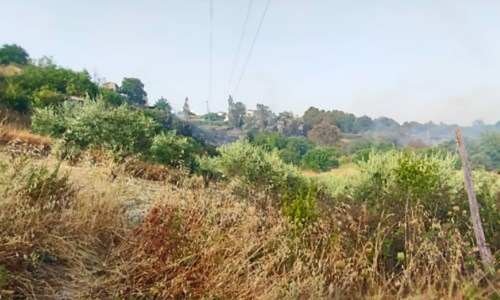 Calabria in fiammeIncendio ad Acquaformosa, spento il fronte di fuoco giunto a ridosso delle case
