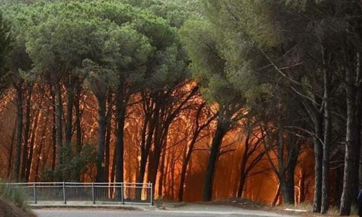 Incendio a Siano