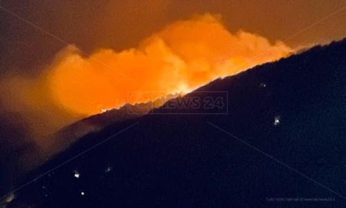 Calabria in fiammeIncendi: «Bruciano Aspromonte e Calabria, difficile pensare che non c'entri la 'ndrangheta»