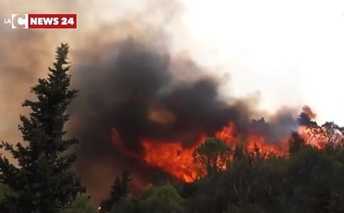 Il provvedimentoDl incendi, via libera del Consiglio dei ministri: pene più serve per i piromani