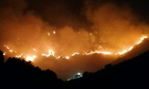 Emergenza roghiIncendi, i sindacati dei Vigili del fuoco: «Servono assunzioni, il Governo dia seguito alle parole»