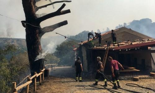 La Calabria bruciaSan Floro, il fuoco danneggia l'allevamento dei bachi da seta: «Aiutateci a ricostruire»