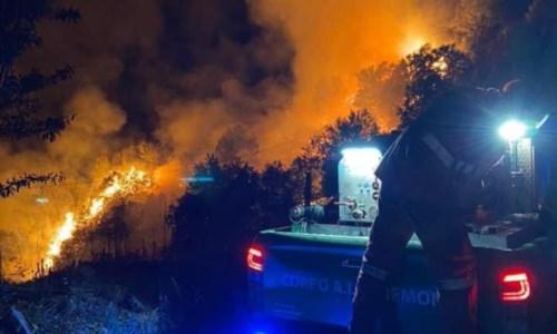 La Calabria bruciaIncendi, brucia la montagna di Casali del Manco: a rischio Pedace e Casole Bruzio