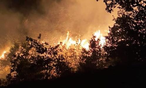 Calabria in fiammeIncendio nel Cosentino, sedate le fiamme sulla montagna di Casali del Manco