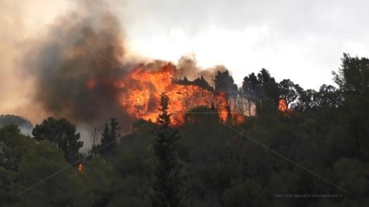 Calabria fragileIncendi, edilizia selvaggia e dissesto idrogeologico: «Ecco perchè stiamo mettendo a rischio noi stessi»