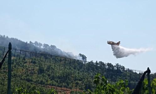 Roghi nel CosentinoBrucia la montagna di Fagnano Castello, sul posto due canadair e pompieri dall'Emilia Romagna