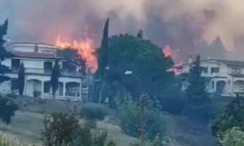 Roghi nel CosentinoIncendio a San Basile, fiamme a un passo dalle case: evacuate tre famiglie