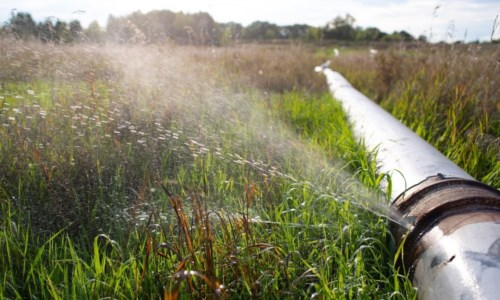 La guerra dell'acquaEmergenza idrica a Reggio, sabotati i serbatoi comunali: «Minacciati i nostri dipendenti»