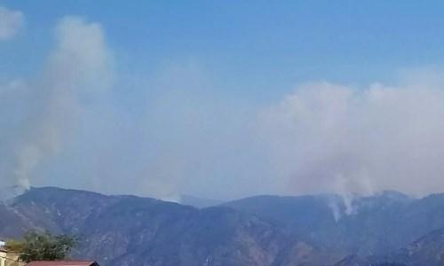 Calabria in fiammeIncendi, l'Aspromonte brucia ancora: chiuse strade e sentieri per la diga del Menta e le cascate di Maesano