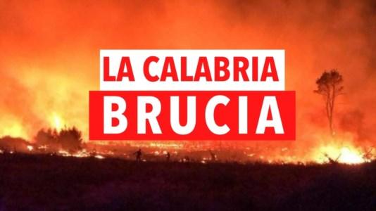 Sud in fiammeIncendi in Calabria, roghi dal Pollino allo Stretto: notizie e aggiornamenti in tempo reale -LIVE