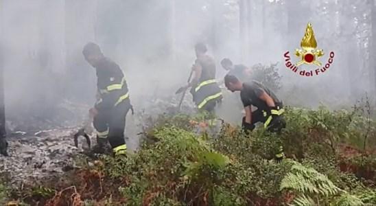 La Calabria bruciaIncendi, l'Aspromonte brucia ancora: Canadair e uomini in azione vicino alla diga del Menta