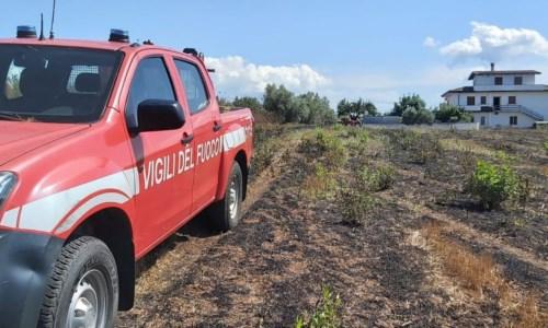 Eroi in divisaIncendio in un uliveto nel Vibonese: 93enne salvato dai Vigili del fuoco