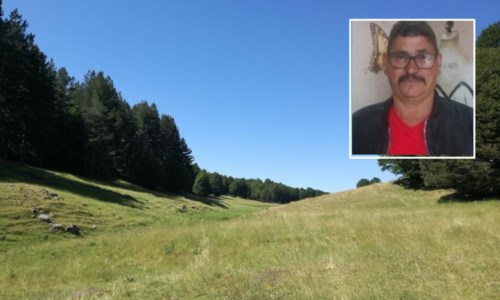 Caso risoltoRitrovato l'uomo scomparso nella Sila catanzarese mentre cercava funghi