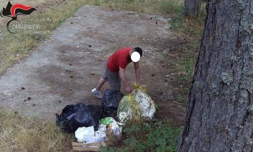 Abbandonano rifiuti nel Parco della Sila: sanzioni per quattromila euro