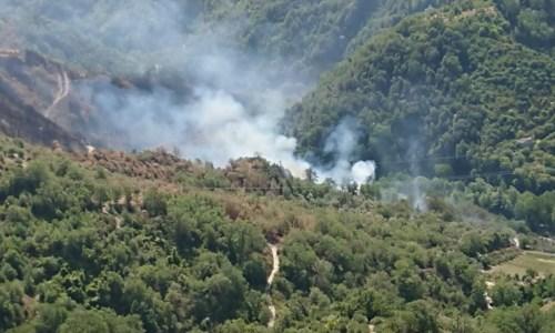 Il drammaAcri, gravemente ustionato in un incendio divampato nel suo terreno: muore un 56enne