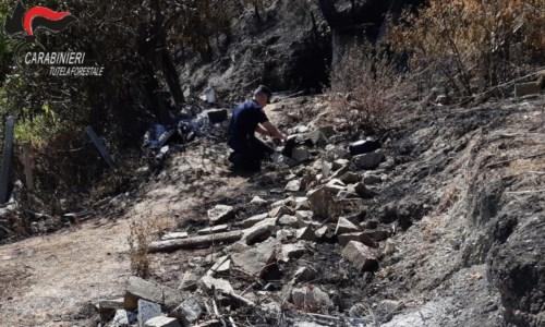 Dalla SibaritideAppiccò un incendio ad Albidona, individuato e denunciato un 30enne