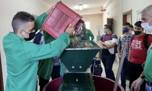 Ritorno in classeSan Giovanni in Fiore, all'Agrario l'anno scolastico inizia fra i vigneti