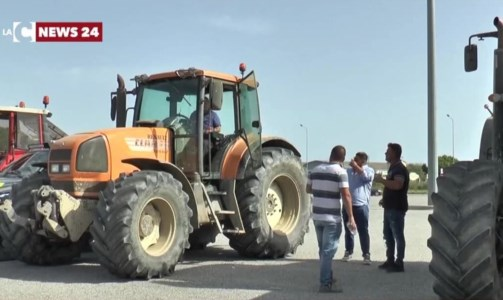 Lotta al caro prezziCorigliano Rossano, la disperazione di agricoltori e allevatori in protesta sulla 106: «Siamo al collasso»