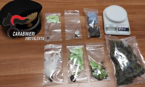 Droga nascosta in casa, due persone arrestate nel Vibonese