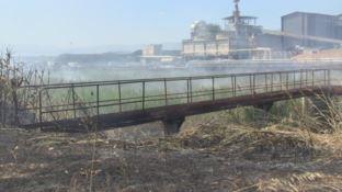 Rapporto Ispra sui danni ambientali, tra i nuovi casi c'è Rende con la Legnochimica