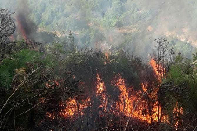 Incendio tra Belcastro e Petronà