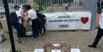 Processo per la morte del cane Angelo, attesa la sentenza