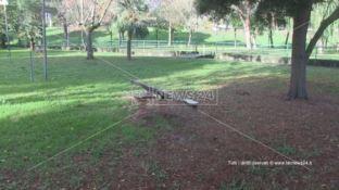 Degrado al Parco Robinson di Rende, scatta la bonifica